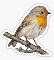 Spring Robin Sticker