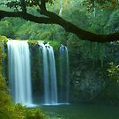 Dangar Falls Framed by Michael Matthews