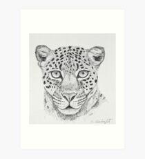 Leopard Head Art Print