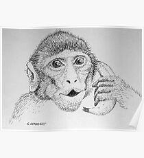 "Monkey on ""Phone"" Poster"