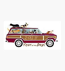 Year of the Dog - Waggies in a Waggy Photographic Print