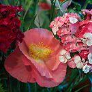 Summer Boquet by Rose Mary Cheek