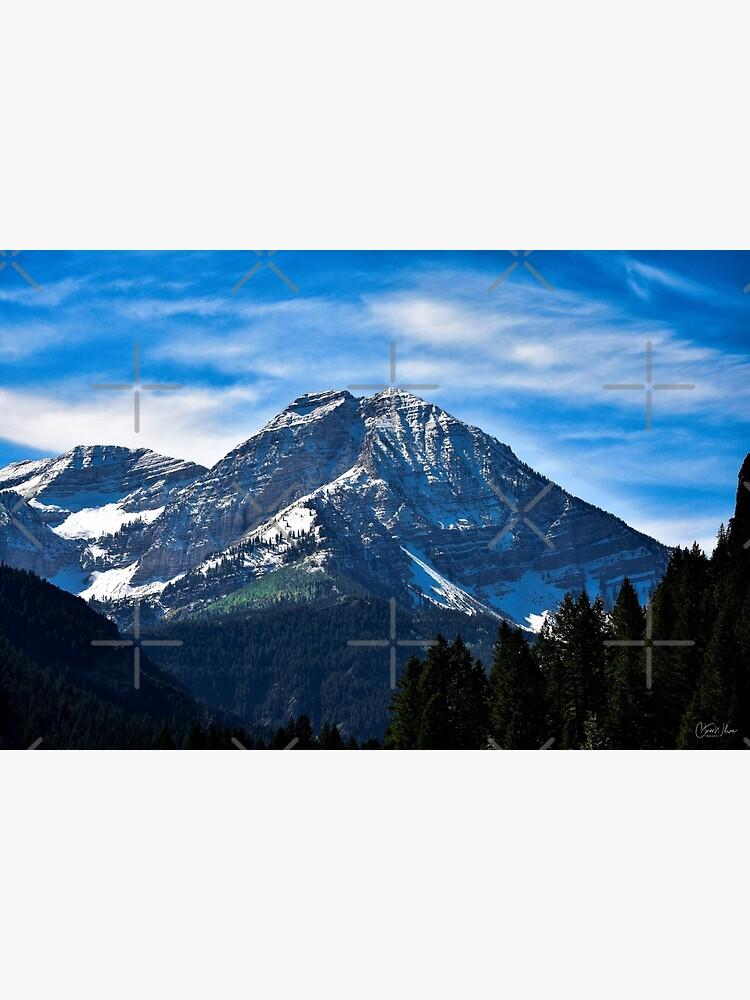Loop alpino de WilsonFineArt