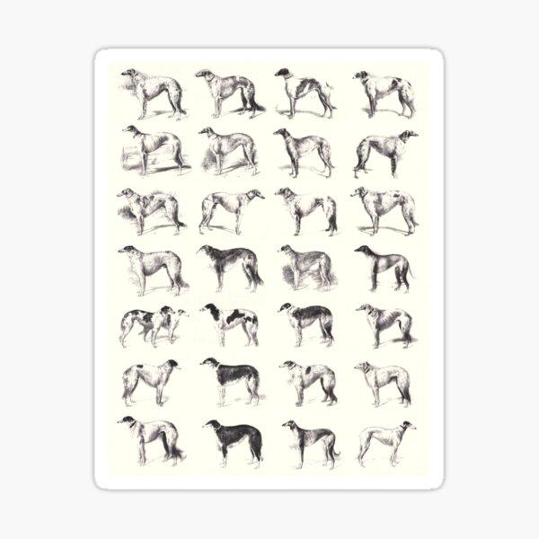 Martynow Borzoi 28 Vintage Sketches Sticker