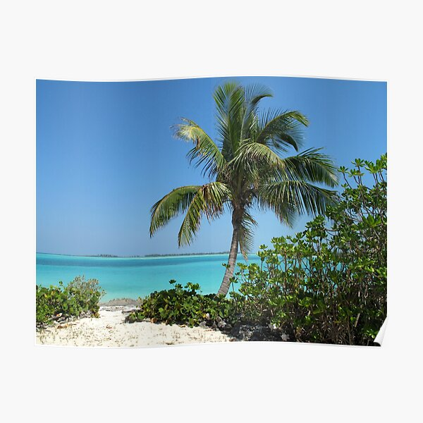 Pelican Cay  Poster