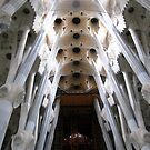 Gaudi Abstract Columns and Ceiling by Honor Kyne
