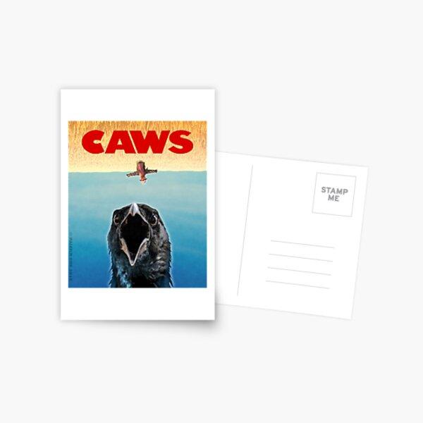 CAWS Postcard