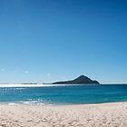 Shoal Bay - Blue by Michael Howard
