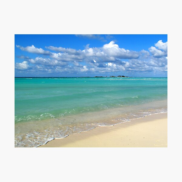 Breezy Day at Gillam Bay  Photographic Print