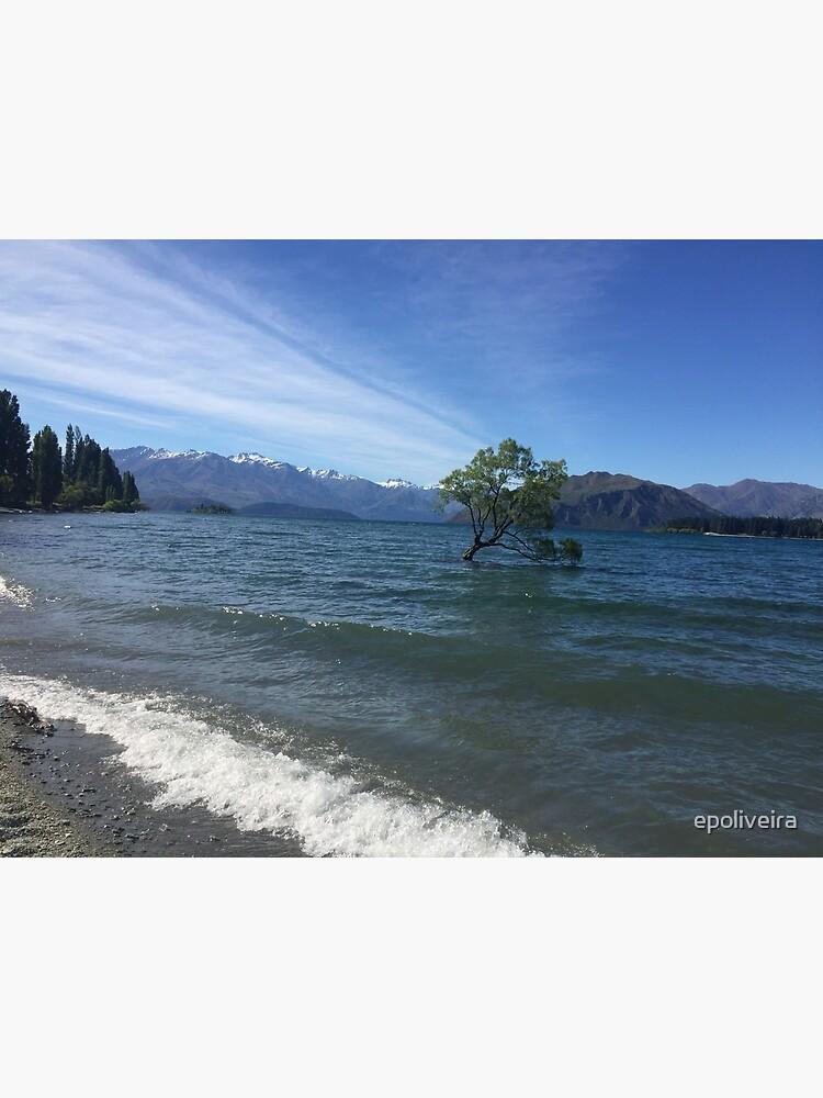 That Wanaka Tree New Zealand Nature Photography by epoliveira