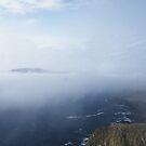garden in mist by NordicBlackbird