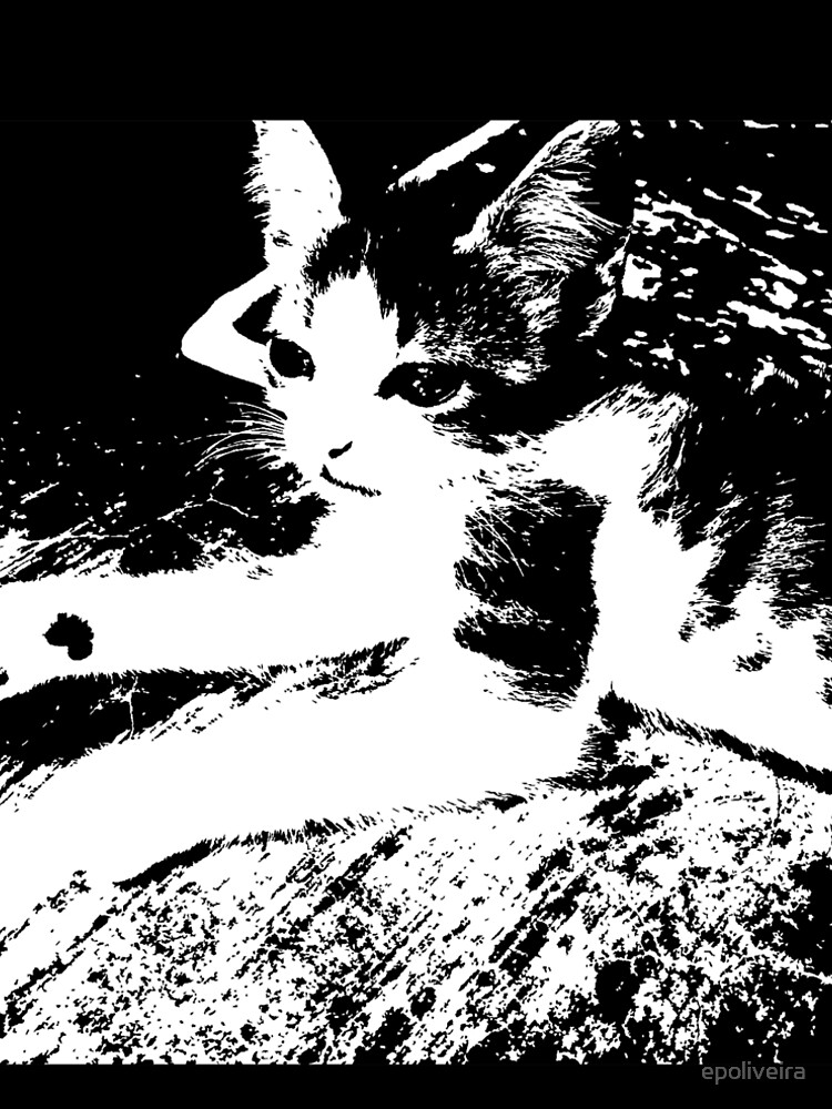 Little Kitten Cute Black and White Photography by epoliveira