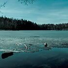 Cold Lake by Gustav Nordlund