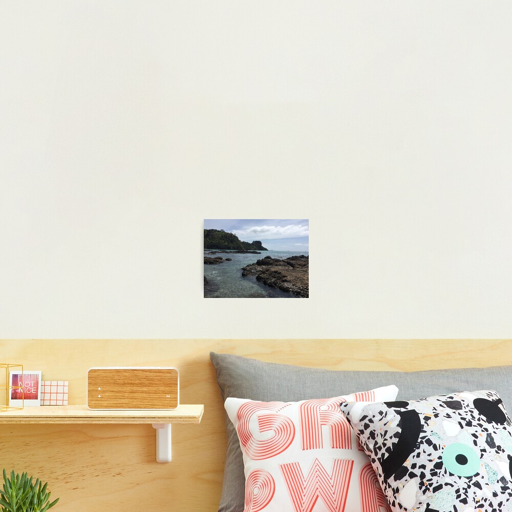Palm Beach New Zealand Nature Photography Photographic Print