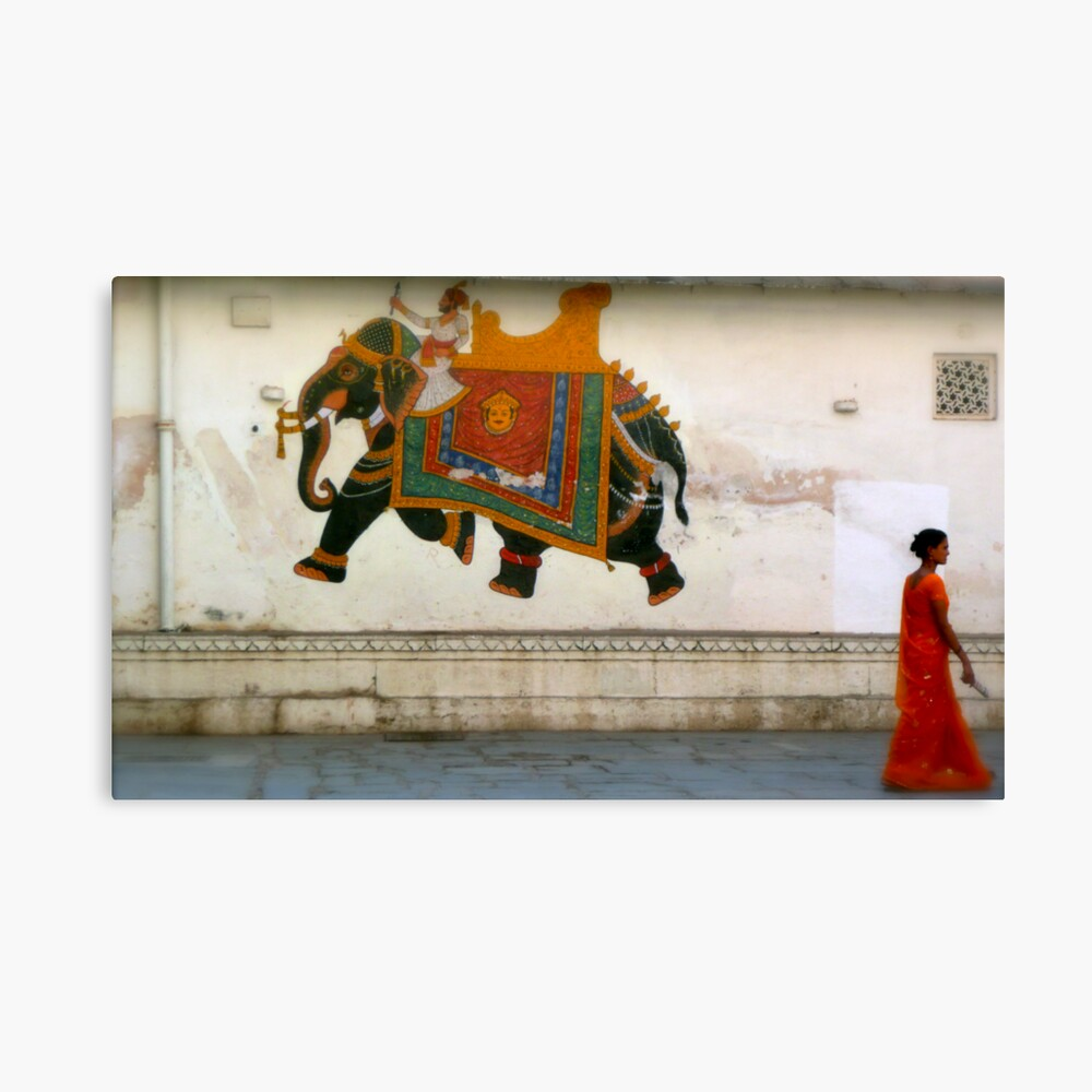 the elephant on the wall Canvas Print