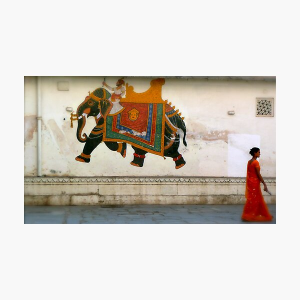 the elephant on the wall Photographic Print