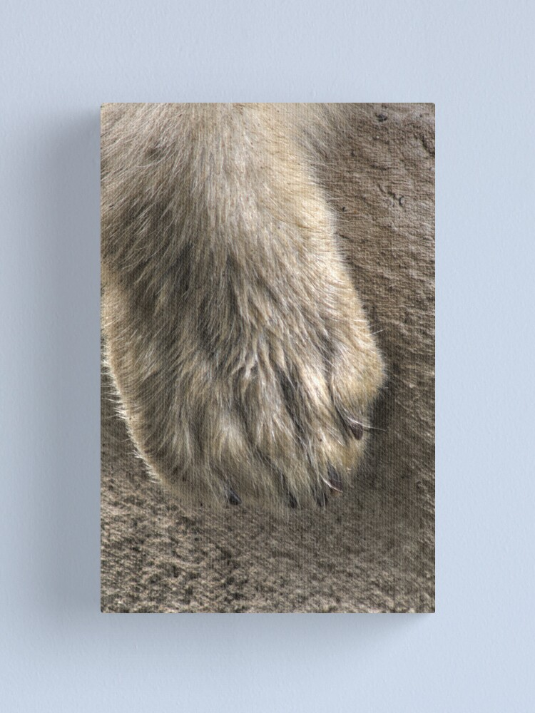 Alternate view of Dirty Paw Canvas Print