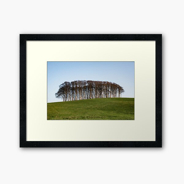 Nearly Home Trees, Coming home trees, Cornwall trees Cookworthy Knapp Cornwall,Trees at the top of the hill Framed Art Print
