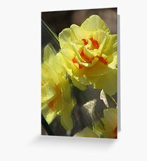 ~Spring Frenzy~ Greeting Card