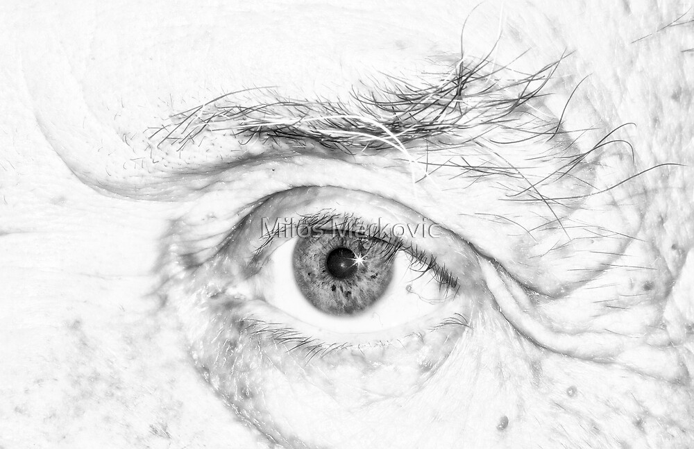 The Eye by Milos Markovic