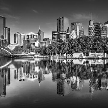 Melbourne Reflected by Maiden