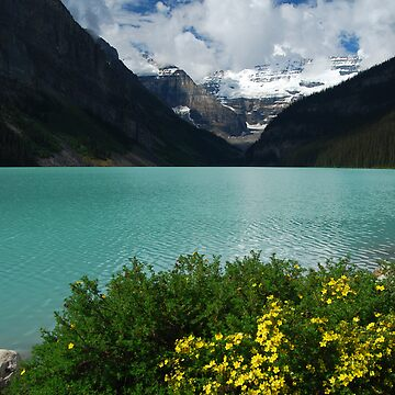 Lake Louise - 4 by buzzword