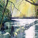 Tarr Steps by Glenn  Marshall