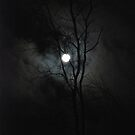 Under the Full Moon by Vonnie Murfin