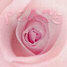 Peace by inkedsandra