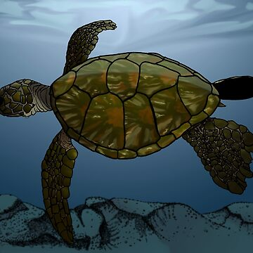 Sea Turtle by feralbeagle