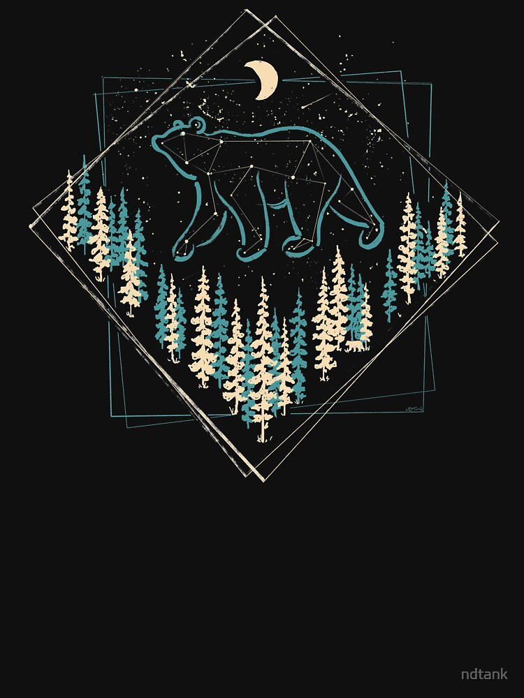 Der wilde Bär des Himmels von ndtank