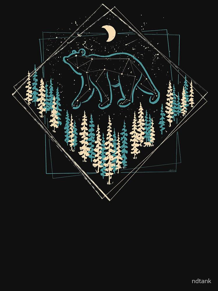 The Heaven's Wild Bear by ndtank