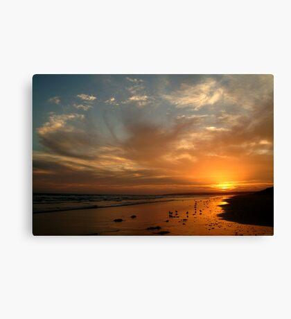 Pt Impossible Torquay, Great Ocean Road Canvas Print