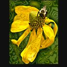Yellow Madness by Ann E.  Chapman