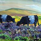 Belted Galloway Cows on Dartmoor by MikeJory