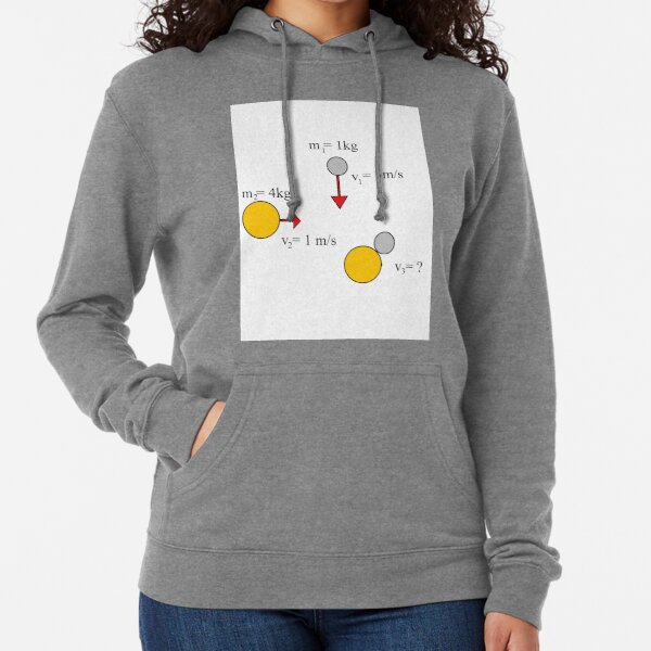 Diagram, pattern, tracery, weave, template, routine, stereotype, gauge, mold, Physics, #Diagram, #pattern, #tracery, #weave, #template, #routine, #stereotype, #gauge, #mold, #Physics #Mechanics #mass Lightweight Hoodie