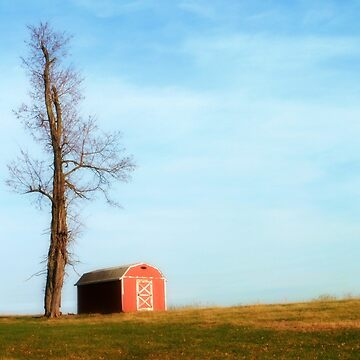 The Little Red Barn by Bine