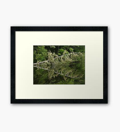 Symmetry in Water Framed Print