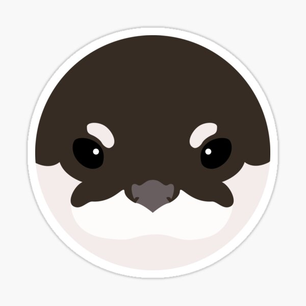 Asian Small-Clawed Otter Sticker