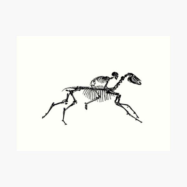 Horse Skeleton Art Print