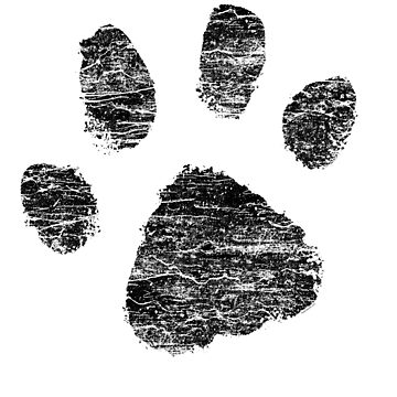 Dog Paw Print For Pet Lovers by superdazzle