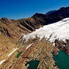 Glacial Retreat by Nancy Richard