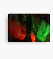Red Breasts Canvas Print
