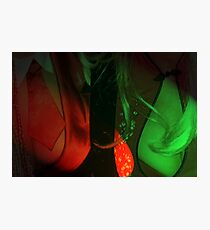 Red Breasts Photographic Print