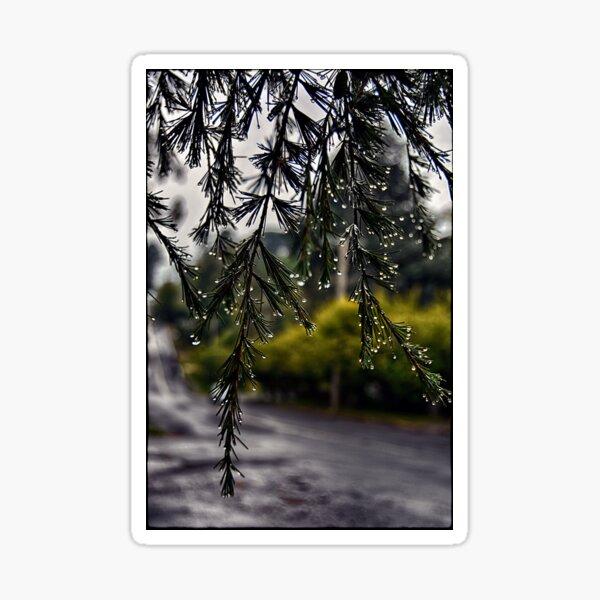 Rainy morning Sticker
