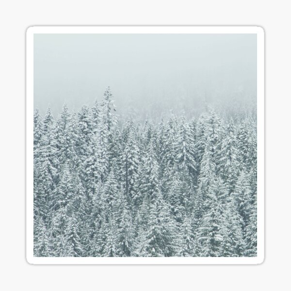 Snowy Tree Tops Sticker