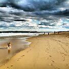 DOG BEACH by Throwing  Buckets Magazine