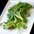 Green Leaf Salad by Tina Hailey