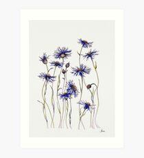 Lámina artística Blue Cornflowers