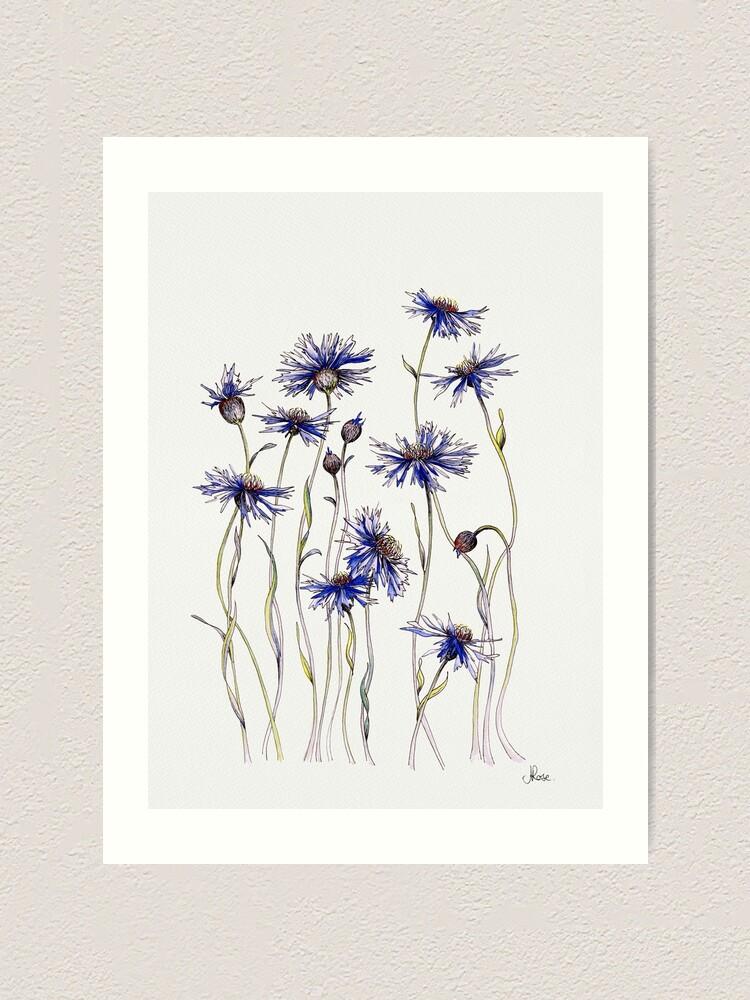 Alternate view of Blue Cornflowers  Art Print